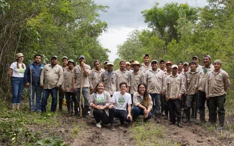 The reforestation team